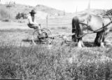 Cheyenne man sitting on plow with horses in field