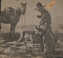 Photo clipping from Newspaper showing cowboy feeding an antelope
